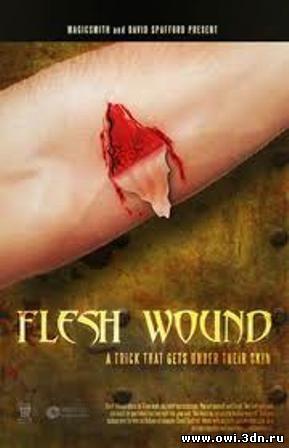 Уязвимая плоть / Flesh Wounds (2010)